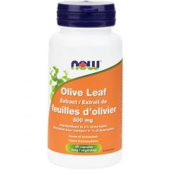 NOW Olive Leaf Extract, Standardized to 6%, 500mg, 60 VCaps