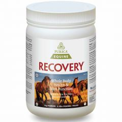 Purica Equine Recovery