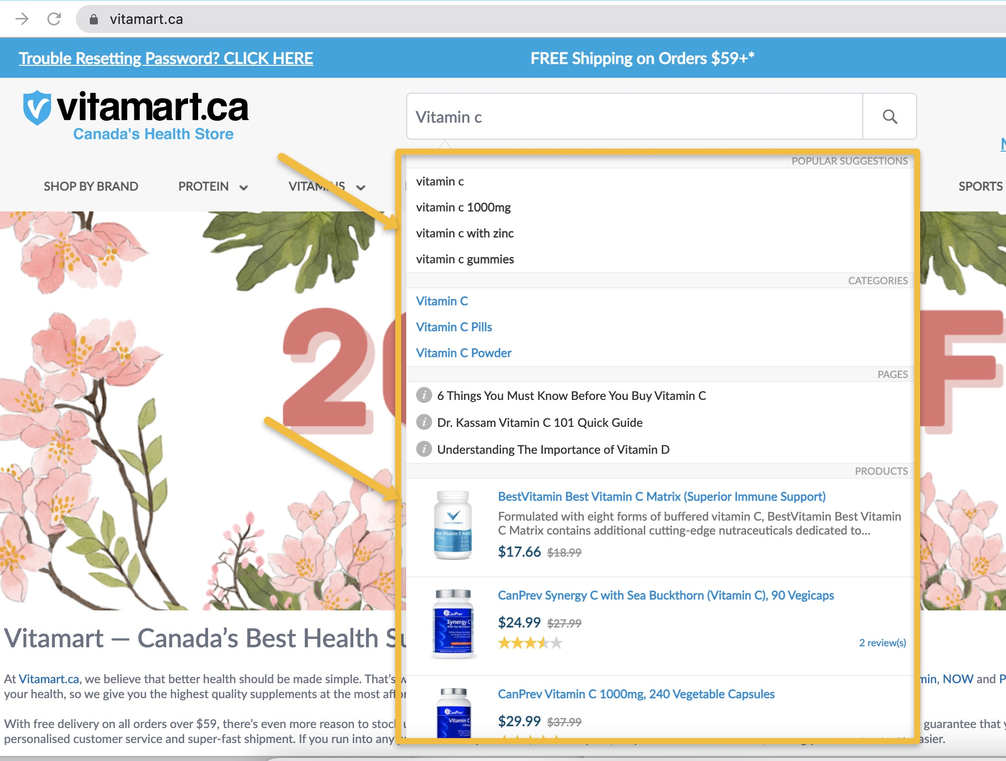 5 Benefits of Vitamart.ca's NEW Enhanced On-Site Search